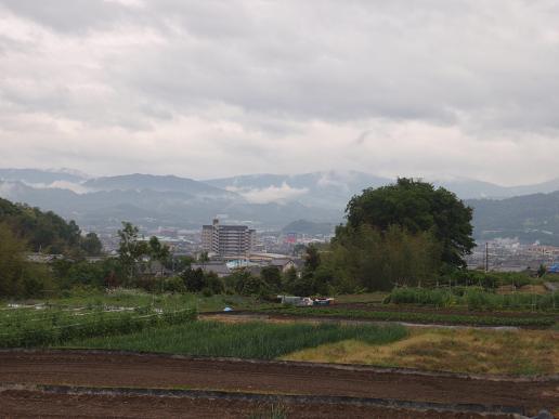 和泉砂川~下井阪 080.jpg