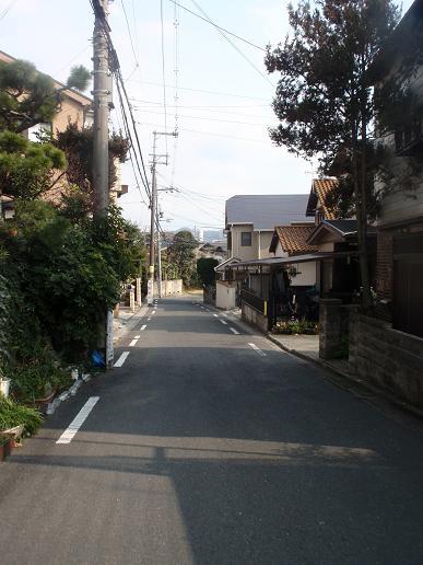 御殿山~藤阪 030.jpg