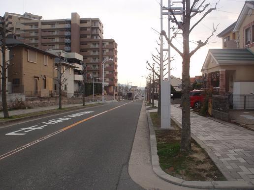 御殿山~藤阪 089.jpg